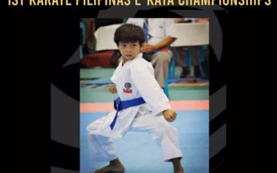 MI Kid Wins e-Karate Tilt